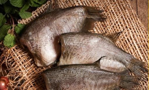 ปลาสลิดแดดเดียว ราคาส่ง